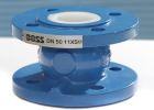 BSS Industrial, non-return valve